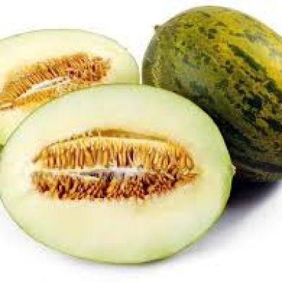 Toad Skin Melon